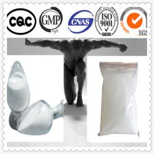 99%Min Purity Tamoxifen Nolvadex CAS No.: 10540-29-1 pictures & photos