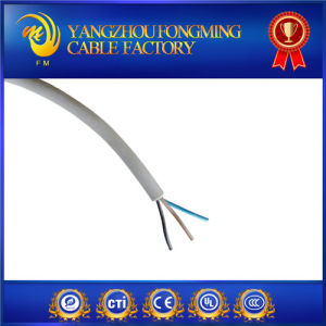 200degree Flat Silicone Coated Wires pictures & photos