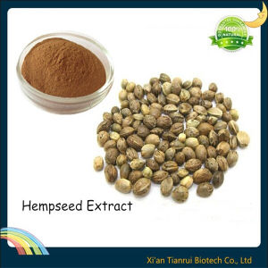 Hempseed Extract, Fructus Seed Extract pictures & photos