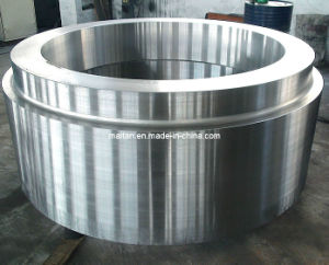 F321 Flange, Ring, Tubesheet Forging Stainless Steel pictures & photos