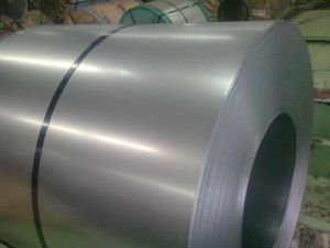 Regular Spangle Dx51d Galvanised Steel Sheet in Coil