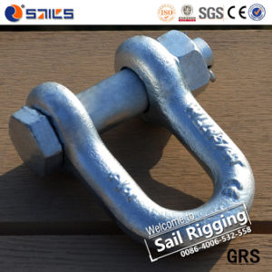 "G2150 1/4"" Hot Galvanized D Shackle pictures & photos"