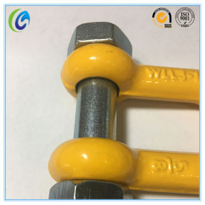 G80 Bolt Type G2150 Shackle pictures & photos