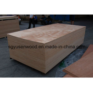 Different Veneers of Commercial Waterproof Plywood pictures & photos