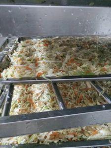 HACCP Brc Certifacte Tsingtao Vegetable 25g/Piece Spring Rolls in Frozen Cookin pictures & photos