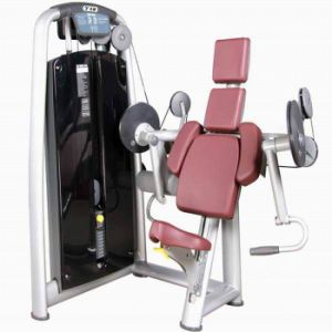 Biceps Curl Fitness Equipment (TZ-6013) pictures & photos