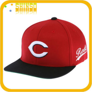 Fashion Cotton Embroidery Flat Cap (FC014AH)