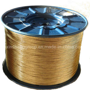 High Quality Brass Plated 3*0.20+6*0.35 Nt/Ht Steel Cord pictures & photos