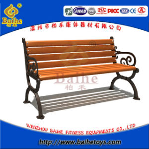 Garden Cast Iron Bench with Handrail and Backrest (BHD 16903)
