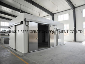 Professional Cold Room, Cold Storage, Walk-in Freezer with Competitive Price