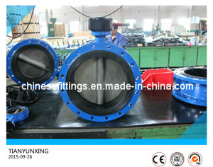 Worm Gear 904L Stainless Steel Disc Casting Body Butterfly Valves pictures & photos