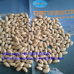 Health Food Food Grade Blanched Peanut Groundnut pictures & photos