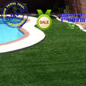 Swimming Pool Grass (LTHBS25P4)