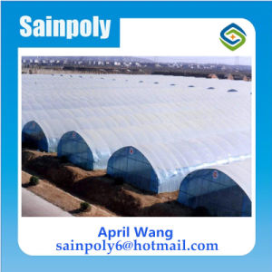 Hot Sale Film Tunnel Hydroponic Greenhouse Systems pictures & photos
