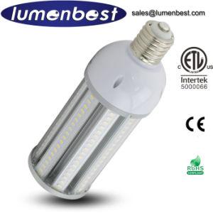 ETL 60W LED Garden Lighting