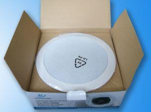 5 Two-Way Ceiling Speaker (YZ-205)