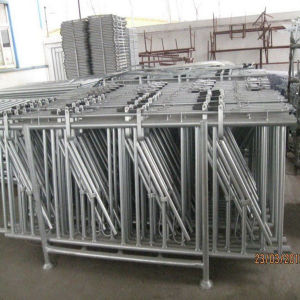 10FT Hot Dipped Galvanized Dairy Equipment Cattle Neck Lock pictures & photos