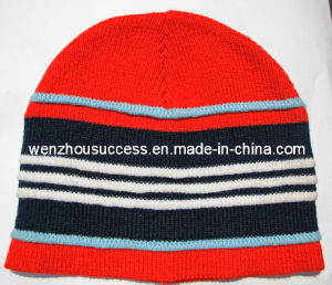 Knitted Beanie Hat (SS12-CK051) pictures & photos