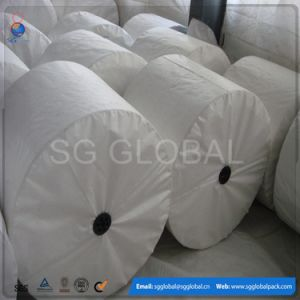 China Optional Color Polypropylene Woven Fabric Tubular PP Bag Roll pictures & photos