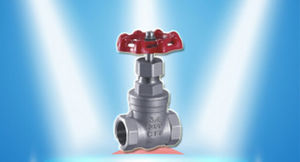 Hard Seal Type Threaded Gate Valve Dn100