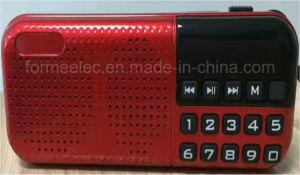 Portable Multimedia FM Radio Mini USB Card Radio pictures & photos