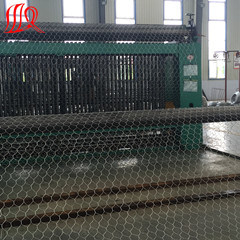 Hot Sale China Supplier Stainless Steel Gabion Basket/Welded Gabion Mesh/Sale Gabion pictures & photos