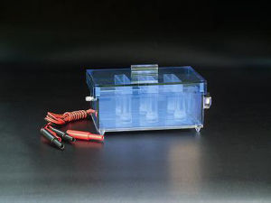 Good Quality Recovering Electrophoresis Cell pictures & photos