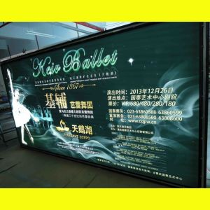 Advertising LED Outdoor Signs (9060) pictures & photos