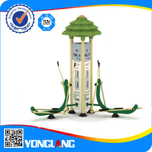 Yl-Js011 CE Approved Outdoor Park Fitness Twin Body Slender Shaping Stepper for Community Use pictures & photos
