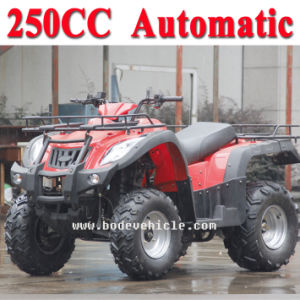 New 250cc ATV Automatic Street Legal ATV (MC-356) pictures & photos