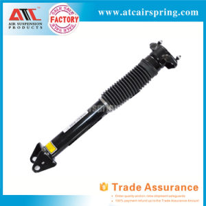 Factory Offer Mercedes Benz W166 Rear Shock Absorber 1663200130 1663200500 pictures & photos