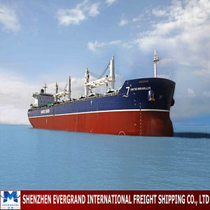 Sea Freight Shipping From China to Saudi Arabia pictures & photos