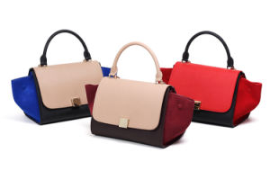 New Fashion Trapeze Ladies Handbag pictures & photos