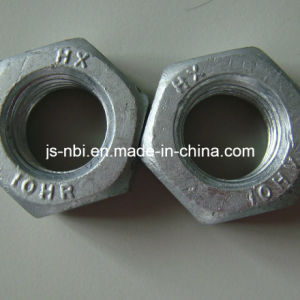 Stainless Steel Hex Head Nut pictures & photos