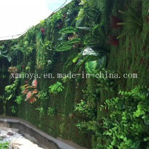 Artificial Moss for Home, Garden, Restaurant, Supermarket, Hotel, Office Decoration pictures & photos