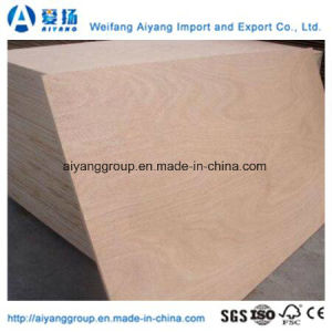 Cheap Price Bintangor/Okoume Plywood for Furniture/Decoration pictures & photos