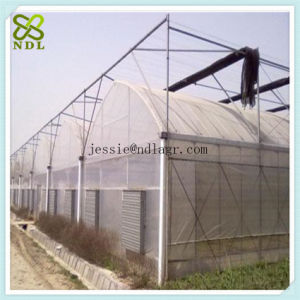 Agricultural PVC Film Greenhouse with Thermal Blanket pictures & photos