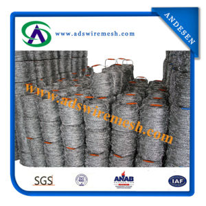 Galvanzied Roll Barbed Wire pictures & photos