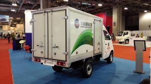 Electric Truck EEC Approved 2 Seater pictures & photos