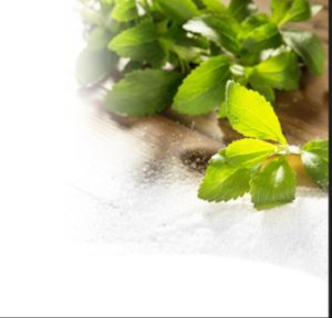 100% Natural Stevia Plant Leaf Extract Stevioside pictures & photos