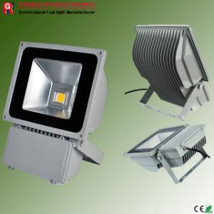 LED Flood Light/20W (GR- T020WFA)