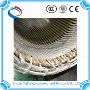 Yb High-Voltage Explosion-Proof Three-Phase Asynchronous Motor pictures & photos