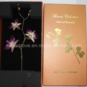 Gift for Mother′s Day-Gold Orchid