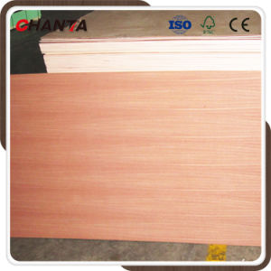 Red Oak, Sapele, Walnut, Teak, Ash Veneer Plywood/MDF for Furniture pictures & photos