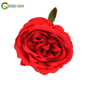 Cheaper Soft Touch Rose Head pictures & photos