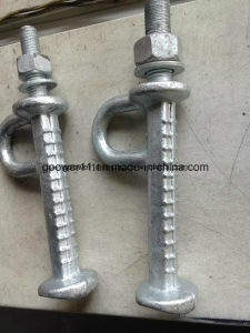 Electric Line Pole Cast Iron Pole Step Bolt pictures & photos