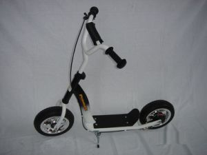"10"" Steel Frame Foot Scooter (PB212) pictures & photos"
