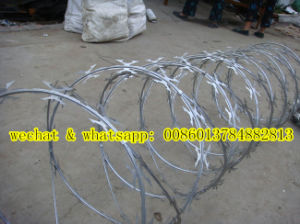 Factory of Razor Wire Cbt 60 (WITHOUT CLIPS) pictures & photos