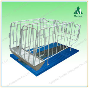 Hot-DIP Galvanizing High Quality Gestation Stall pictures & photos