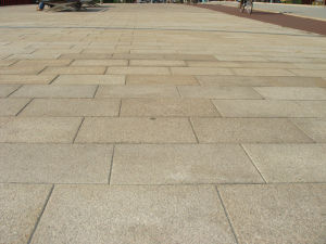 Natural Granite/Marble Paving Stone Tile for Flooring pictures & photos